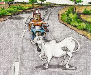 Art of Motorcycle Braking